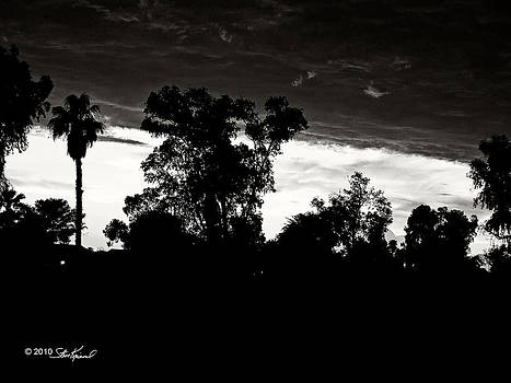 Steve Knievel - Under the Clouds Sunset Black and White Version
