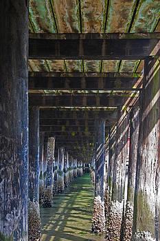 Under the Coupeville Pier by Kent Sorensen