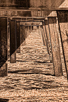 Under the Jacksonville Bridge in Sepia by Frank Feliciano