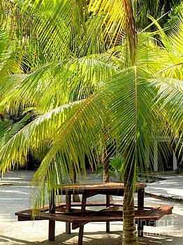 Under the Palm Tree by Enid Gough