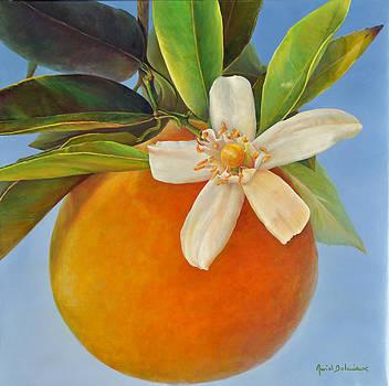 Une Fleurs Une Orange by Muriel Dolemieux