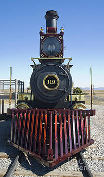 Tim Mulina - Union Pacific 119 Front
