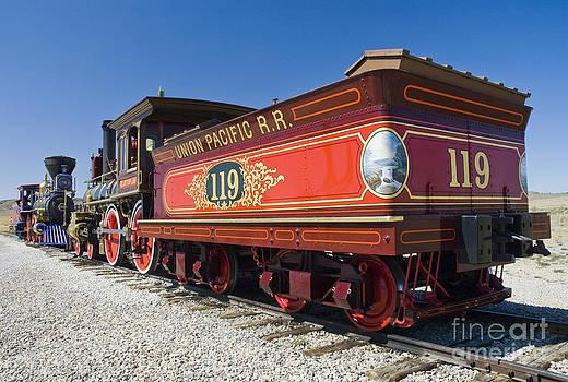 Tim Mulina - Union Pacific 119  Rear