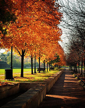 Urban autumn by Dick Wood