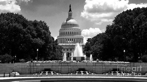 Pravine Chester - US Capitol in Monochrome