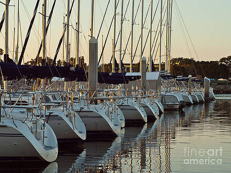 USA-0021-Sailboats on the Bay by Les Abeyta