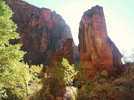 Kathleen Heese - Utah Fall