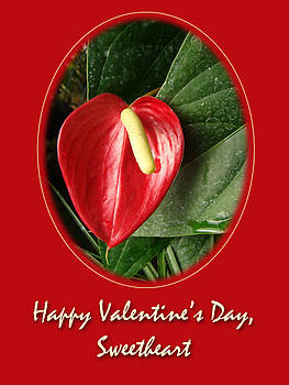 Mother Nature - Valentine