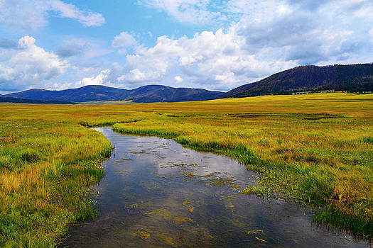 Valles Caldera National Preserve by Mirii Elizabeth