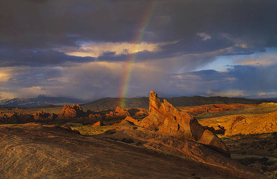 Susan Rovira - Valley of Fire Rainbow