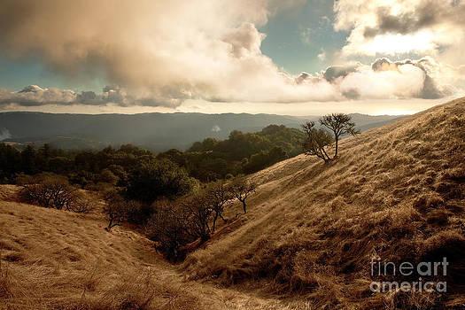 Valley of Gold by Matt Tilghman