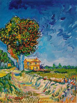 Van Gogh six by Mariano Zucchi