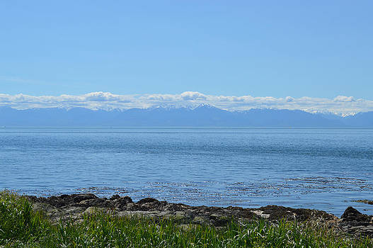 Vancouver Island Shore View by Ann Marie Chaffin