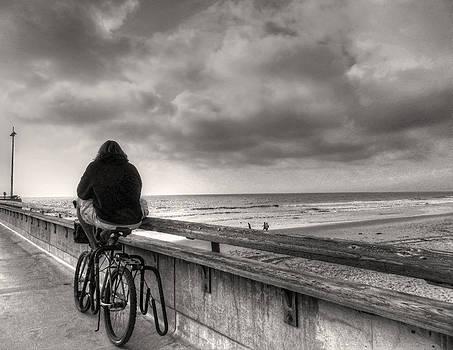 Venice Beach by Stellina Giannitsi