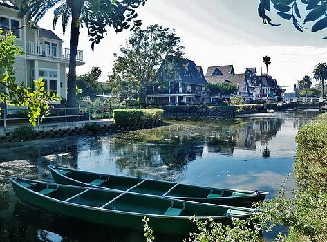 Venice Canals  by Daniele Smith