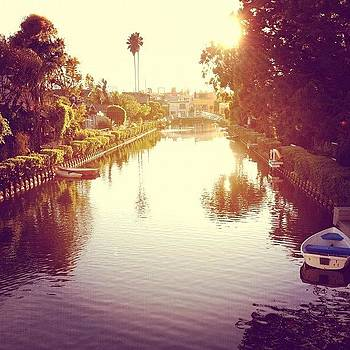 Venice Canals by Jenna Gibson