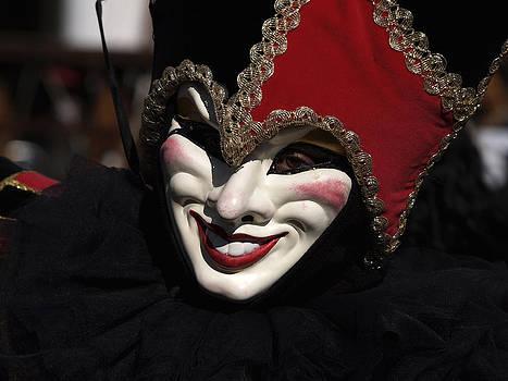 Venice Carnival by Steve Bisgrove