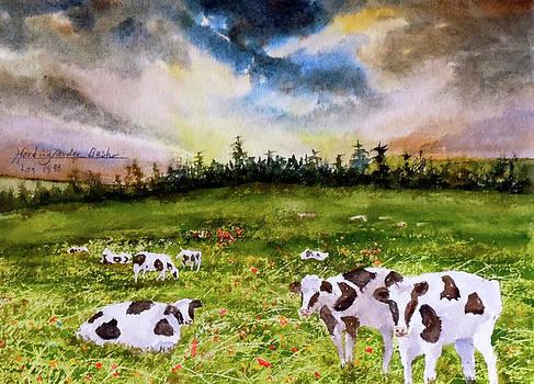 Vermont Cows Sun Rise by Harding Bush