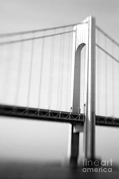 Verrazano-Narrows Bridge 3 by Tony Cordoza