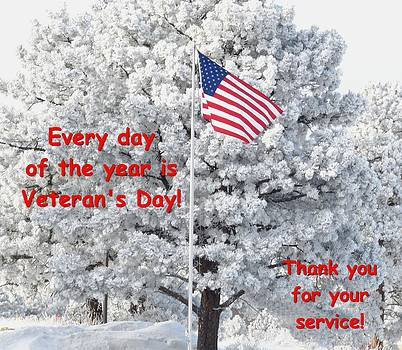 Veterans Day by Phyllis Britton