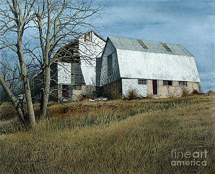 Victoria County Road Barn by Robert Hinves