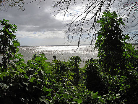 Kurt Van Wagner - View From Charco Verde Ometepe Nicaragua