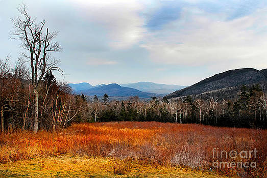 View from Kancamagus Highway by Tom Callan