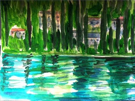 View of Lake Como by Angela Puglisi