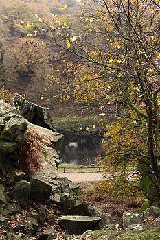 View through Autumn by Ruth MacLeod