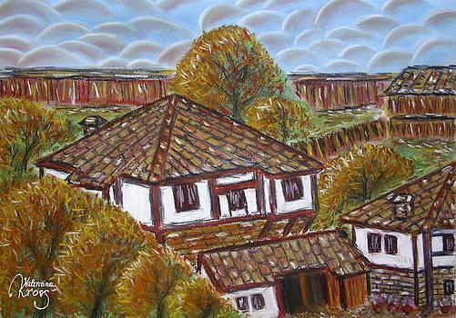 Village Houses by Valentina Kross
