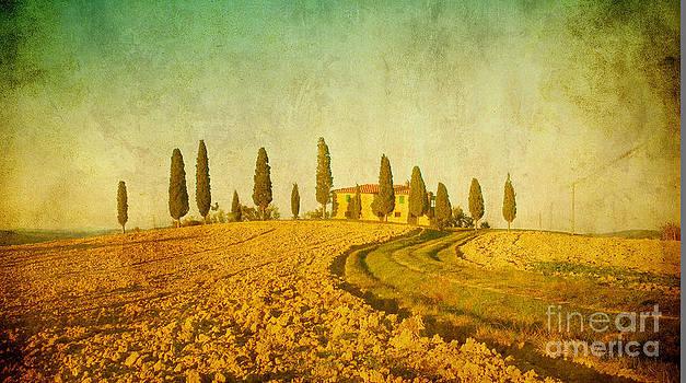 Vintage Tuscan Landscape by Konstantin Kalishko