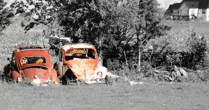 Vintage VW by Elizabeth Hart