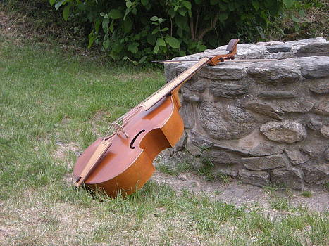 Viola da Gamba and a Wishing-well by Emilija Cerovic