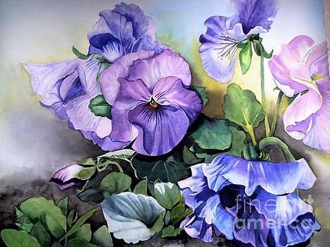 Violas by Stephanie Zobrist