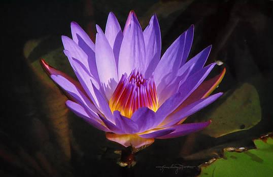 Violet Flame by Karen Casey-Smith