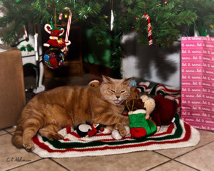 Christopher Holmes - Waiting For Santa