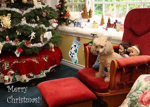 Diana Haronis - Waiting for Santa