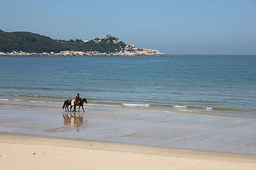 Walk by the Sea by Scarlett Lin