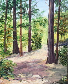 Walk in the Woods by Trudy Morris
