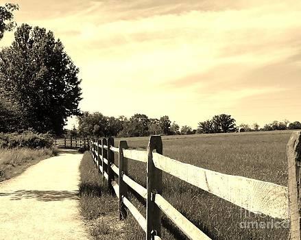 Walk The Line by Elizabeth Hernandez