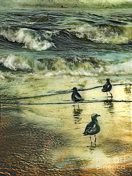 Walking at beach by Anne Weirich