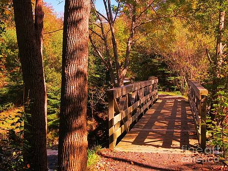 John Malone - Walking Bridge in the Fall