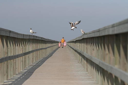 Walking Over The Bridge by Kent Andersen