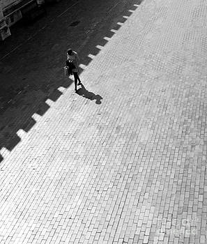 Diagonal by Linda Wisdom