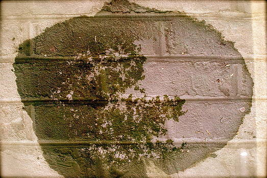 Wall Puddle by The Wholeheart
