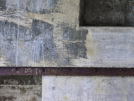 Carol Leigh - Wall Texture Number 12