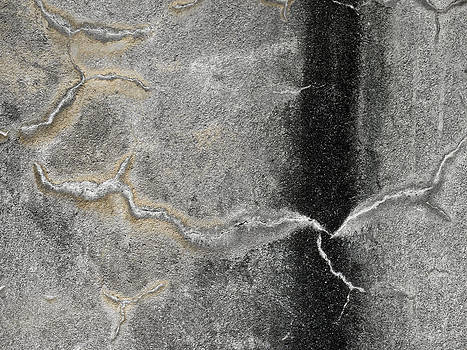 Carol Leigh - Wall Texture Number 4