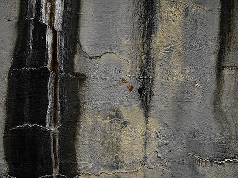 Carol Leigh - Wall Texture Number 5