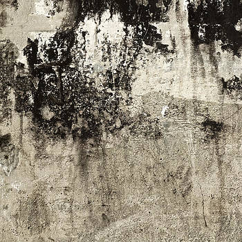 Carol Leigh - Wall Texture Number 9