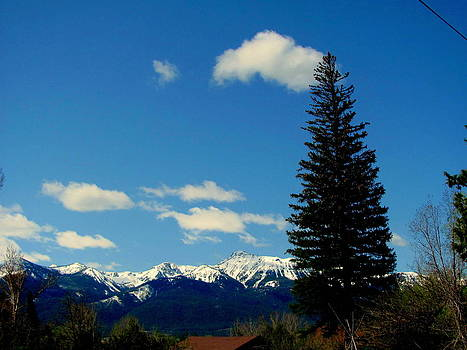 Wallowa Mountains with Tree by Amy Bradley